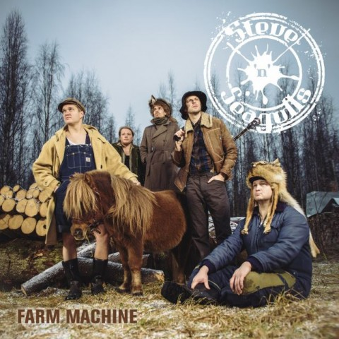 Steve'n'Seagulls: a new cover in country style and details of debut album