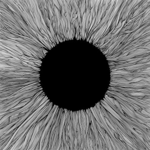 """VOLA releases new full-length """"Witness"""""""